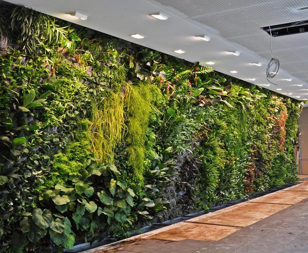 como-se-construye-un-jardin-vertical_full_landscape